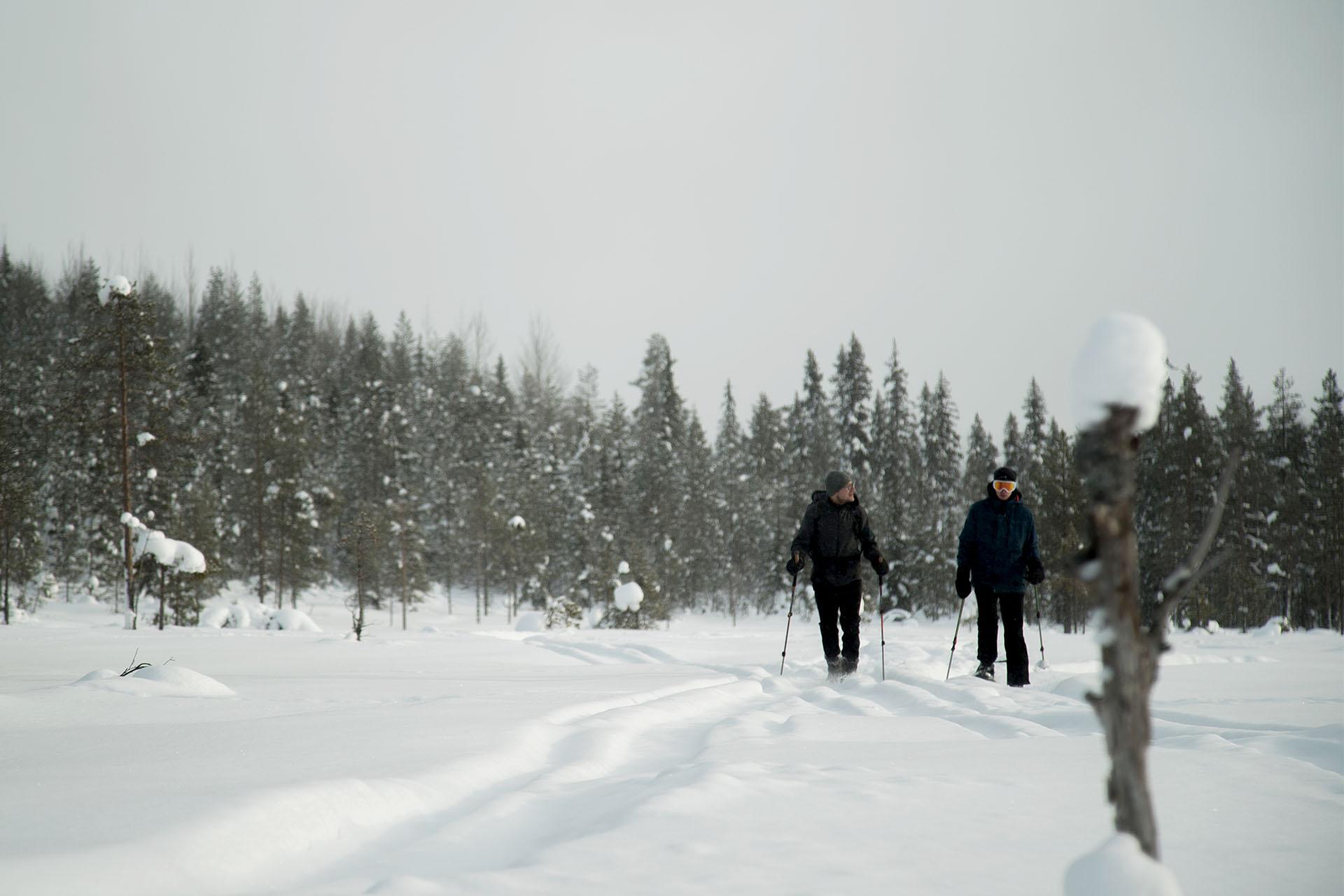 Laplan Stuga & Tours Utflykt på snöskor