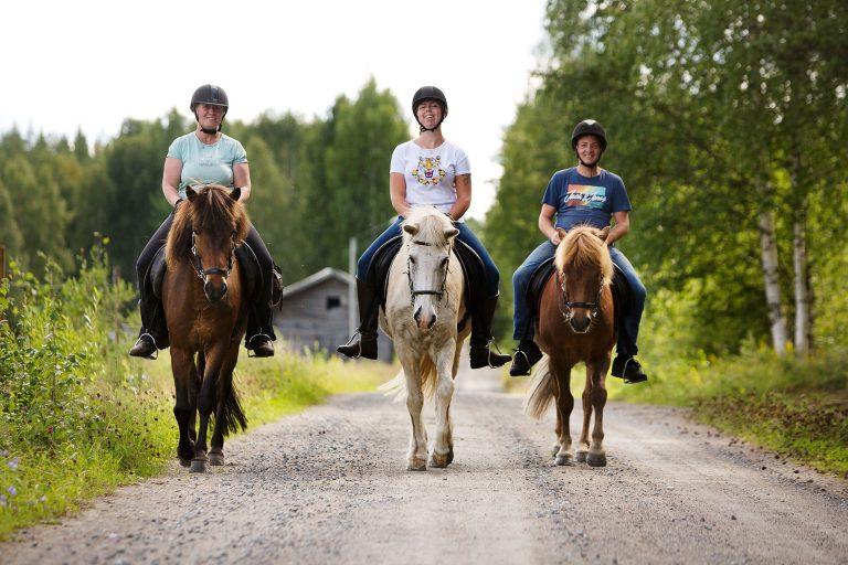 Ridtur på sommaren med Horses of Taiga