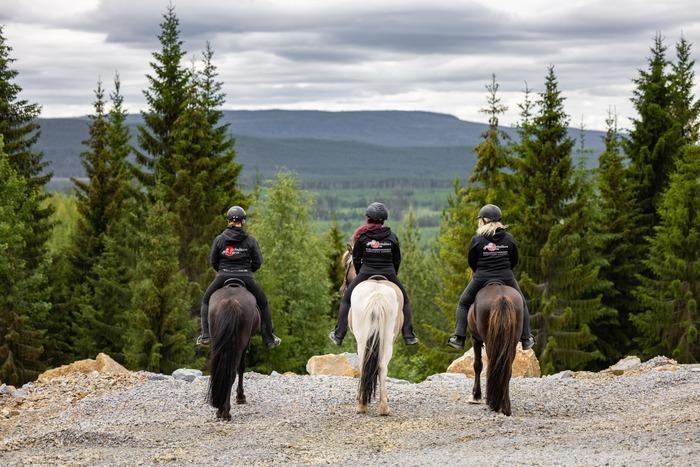 Hästridning i Grönåkers skogen